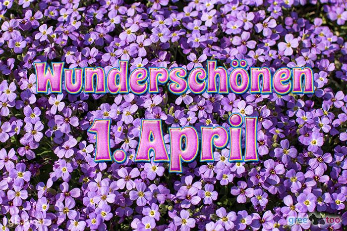 Wunderschoenen 1 April Bild - 1gb.pics