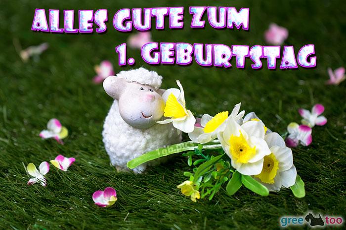 Alles Gute 1 Geburtstag Bild - 1gb.pics
