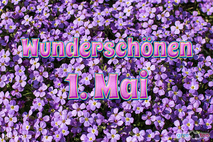 Wunderschoenen 1 Mai Bild - 1gb.pics