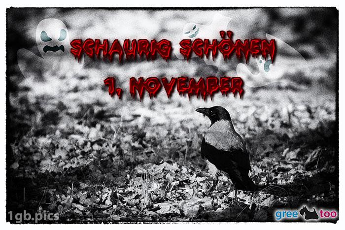 Kraehe Schaurig Schoenen 1 November Bild - 1gb.pics
