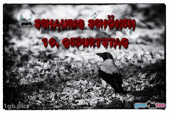 Kraehe Schaurig Schoenen 10 Geburtstag Bild - 1gb.pics