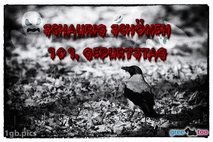 Kraehe Schaurig Schoenen 101 Geburtstag Bild - 1gb.pics