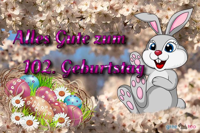 Alles Gute 102 Geburtstag Bild - 1gb.pics