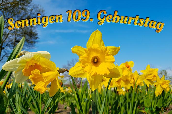 Sonnigen 109 Geburtstag Bild - 1gb.pics