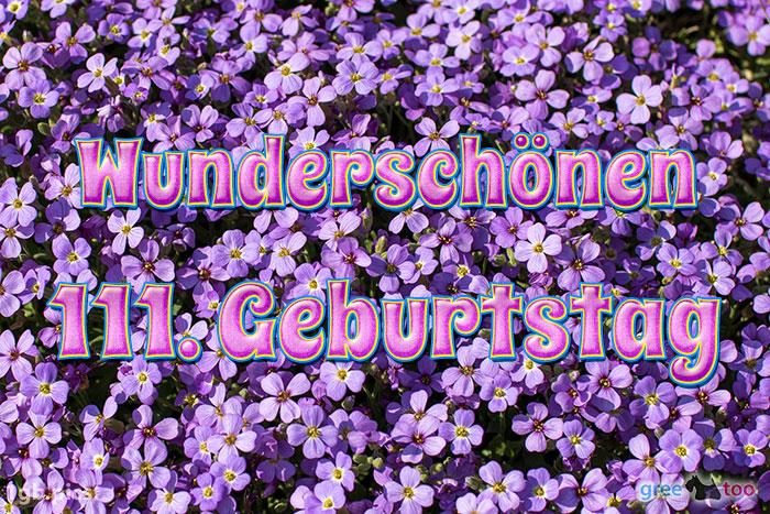 Wunderschoenen 111 Geburtstag Bild - 1gb.pics