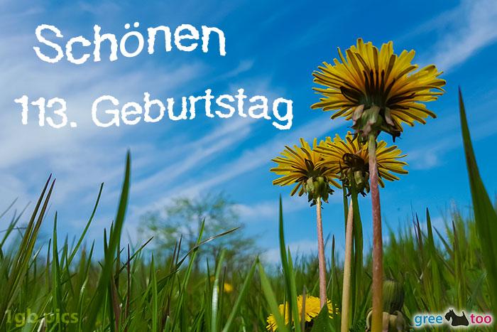 Loewenzahn Himmel Schoenen 113 Geburtstag Bild - 1gb.pics