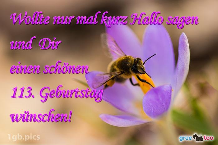 Krokus Biene Einen Schoenen 113 Geburtstag Bild - 1gb.pics