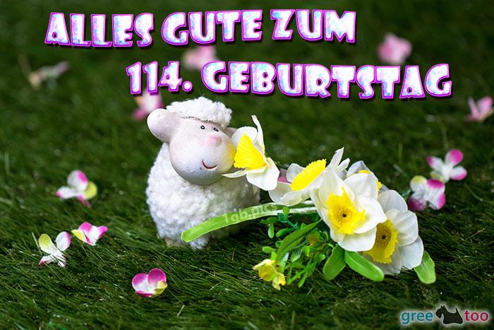 Alles Gute 114 Geburtstag Bild - 1gb.pics