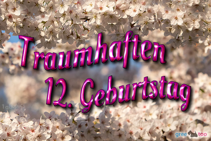 Traumhaften 12 Geburtstag Bild - 1gb.pics