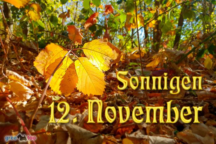 Sonnigen 12 November Bild - 1gb.pics