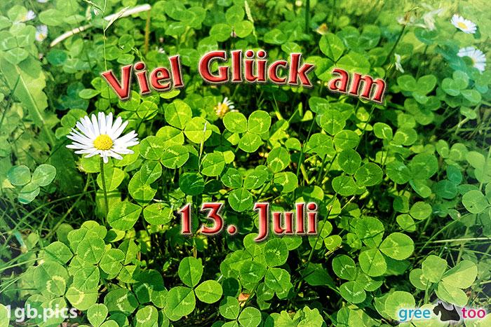 Klee Gaensebluemchen Viel Glueck Am 13 Juli Bild - 1gb.pics
