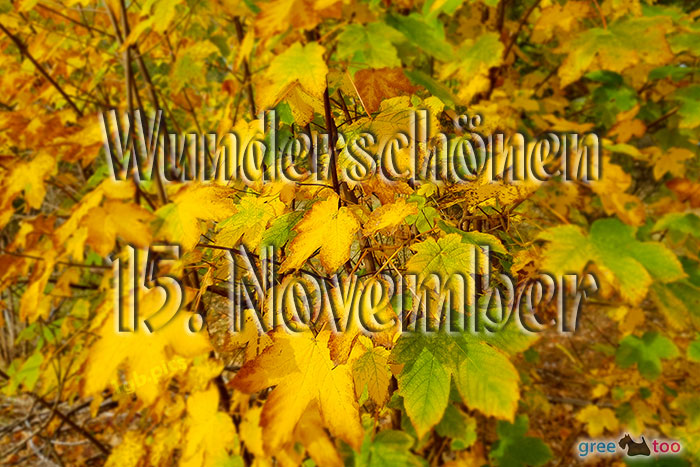 Wunderschoenen 15 November Bild - 1gb.pics