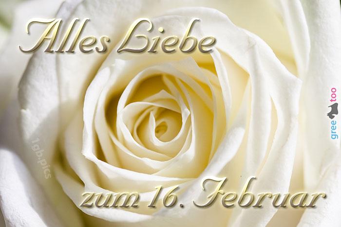Zum 16 Februar Bild - 1gb.pics