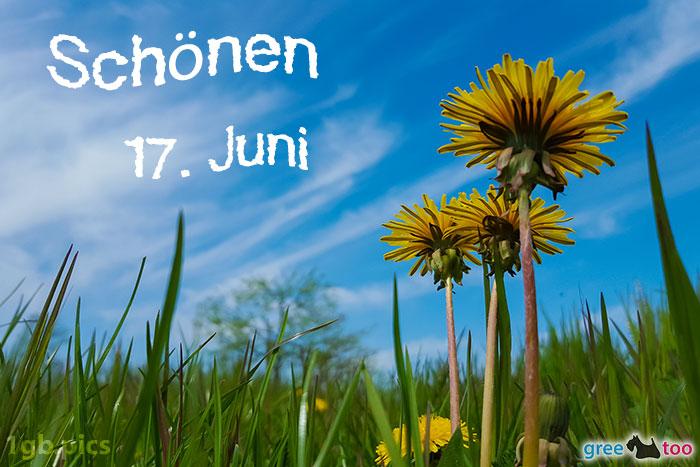 Loewenzahn Himmel Schoenen 17 Juni Bild - 1gb.pics