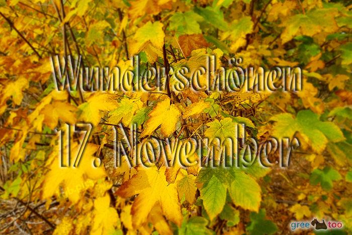 Wunderschoenen 17 November Bild - 1gb.pics