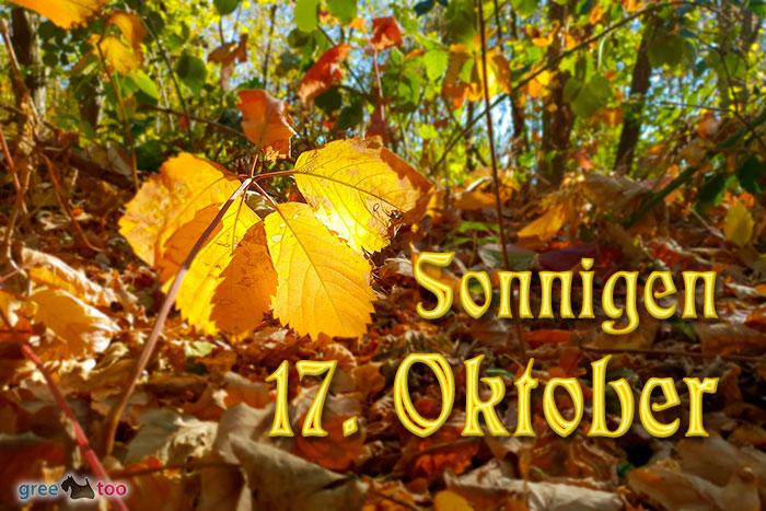 Sonnigen 17 Oktober Bild - 1gb.pics