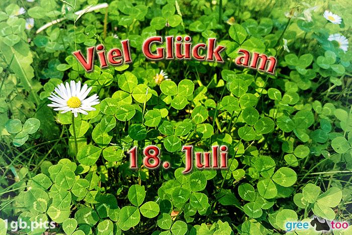 Klee Gaensebluemchen Viel Glueck Am 18 Juli Bild - 1gb.pics