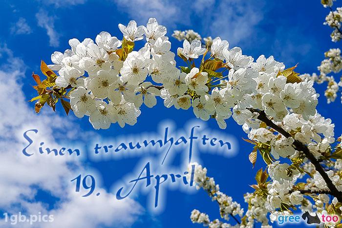 Kirschblueten Einen Traumhaften 19 April Bild - 1gb.pics