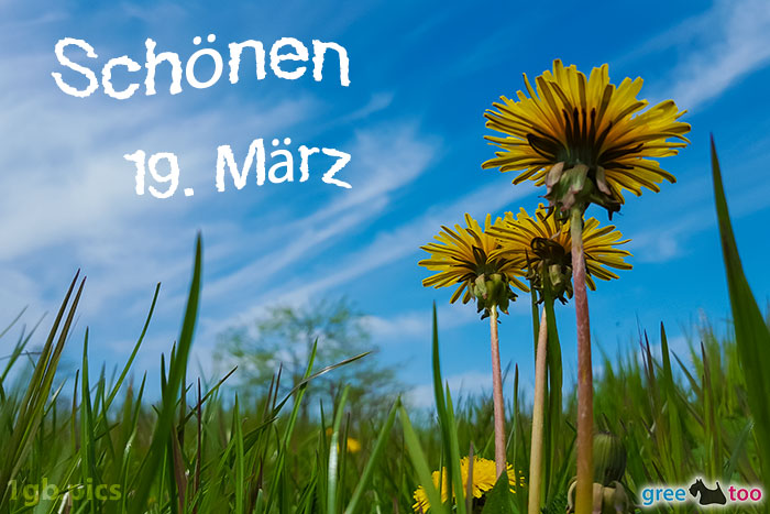 Loewenzahn Himmel Schoenen 19 Maerz Bild - 1gb.pics