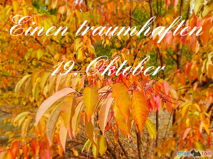 Einen Traumhaften 19 Oktober Bild - 1gb.pics