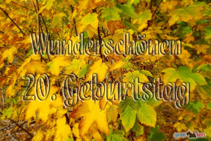 Wunderschoenen 20 Geburtstag Bild - 1gb.pics