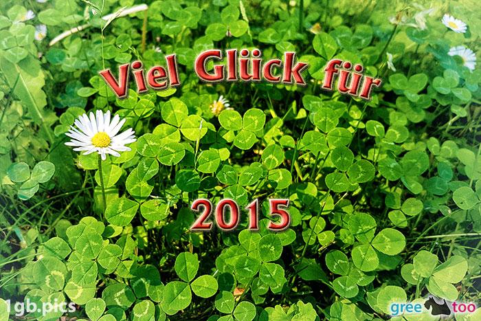 Klee Gaensebluemchen Viel Glueck Fuer 2015 Bild - 1gb.pics