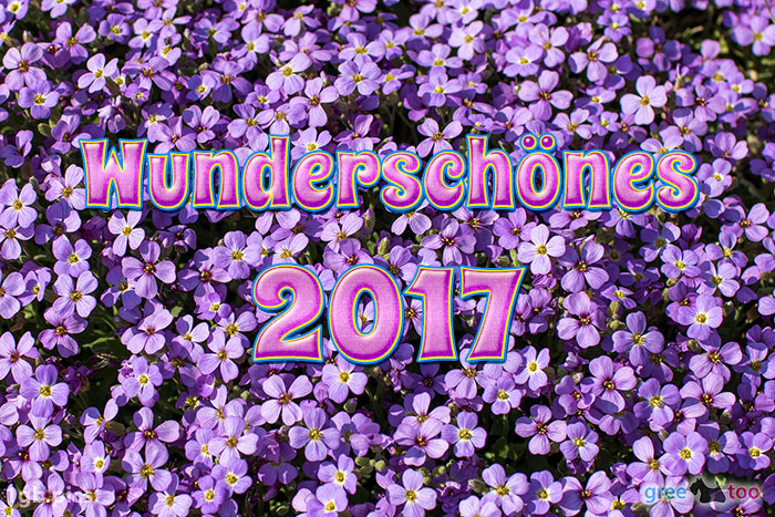 Wunderschoenes 2017 Bild - 1gb.pics