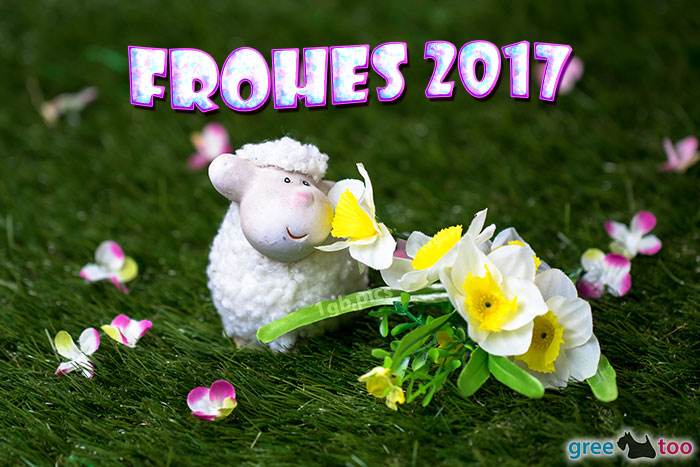 Frohes 2017 Bild - 1gb.pics