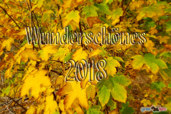 Wunderschoenes 2018 Bild - 1gb.pics