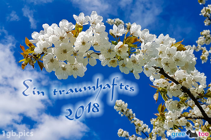 Kirschblueten Ein Traumhaftes 2018 Bild - 1gb.pics