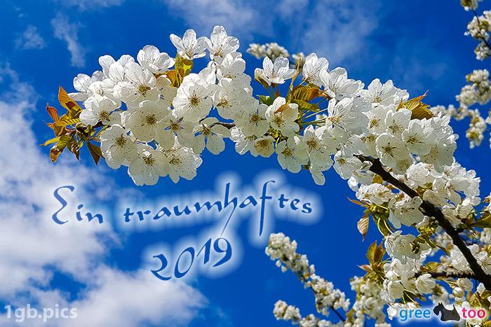Kirschblueten Ein Traumhaftes 2019 Bild - 1gb.pics