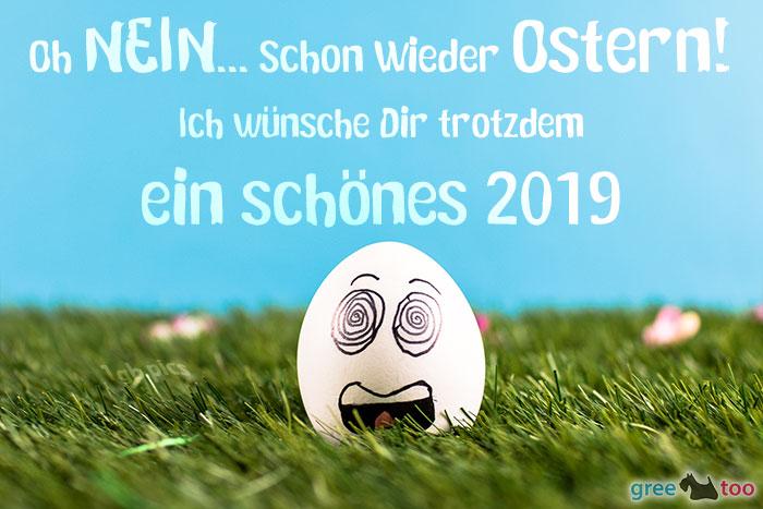 Schoenes 2019 Bild - 1gb.pics