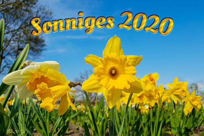 Sonniges 2020 Bild - 1gb.pics