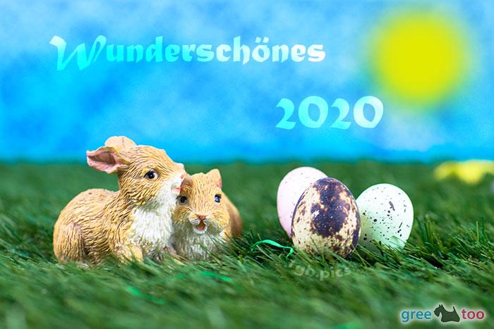 Wunderschoenes 2020 Bild - 1gb.pics