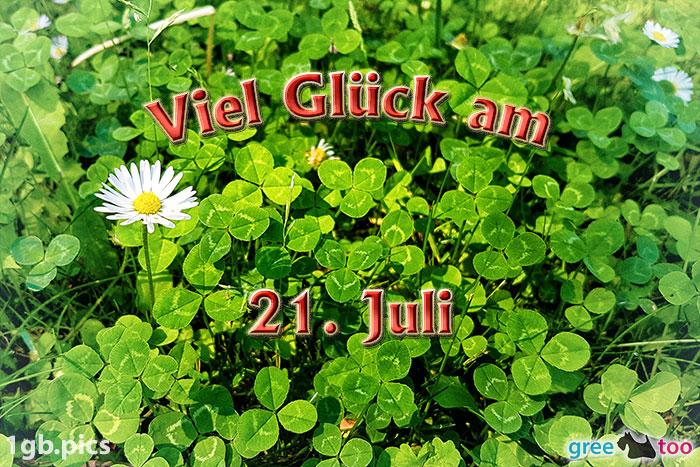 Klee Gaensebluemchen Viel Glueck Am 21 Juli Bild - 1gb.pics