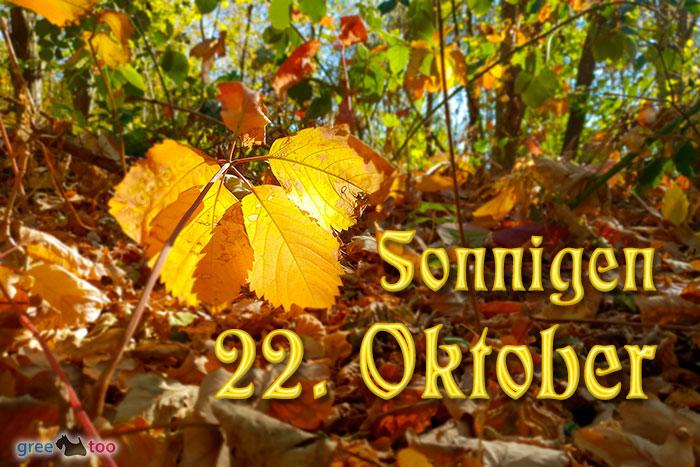 Sonnigen 22 Oktober Bild - 1gb.pics
