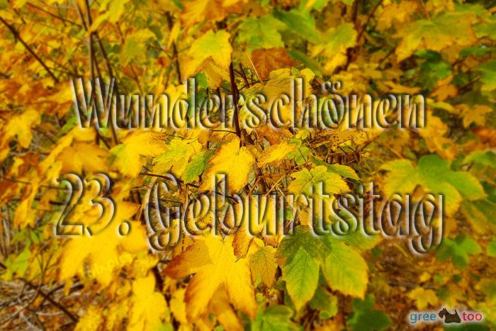 Wunderschoenen 23 Geburtstag Bild - 1gb.pics