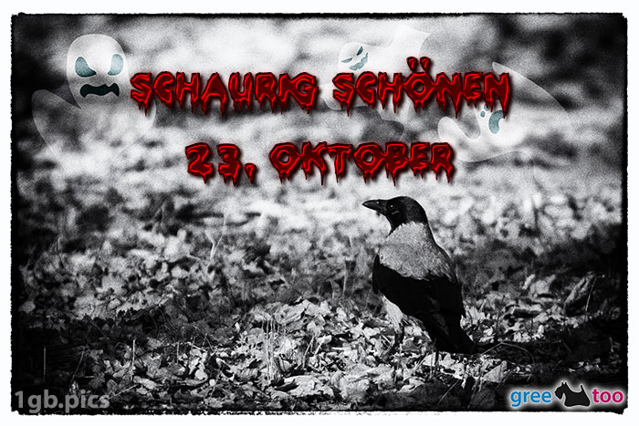 Kraehe Schaurig Schoenen 23 Oktober Bild - 1gb.pics