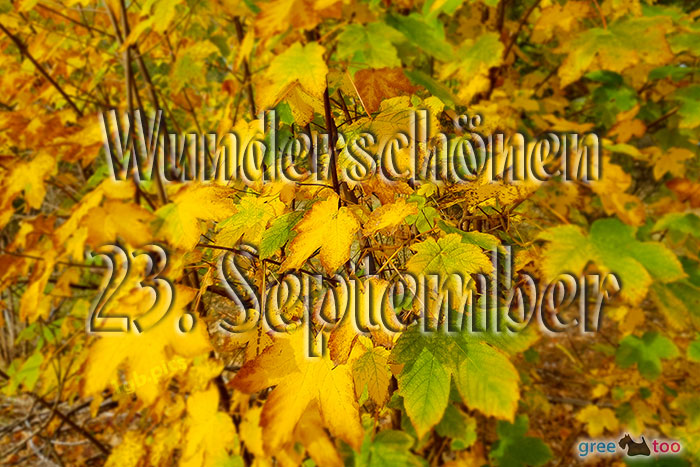 Wunderschoenen 23 September Bild - 1gb.pics