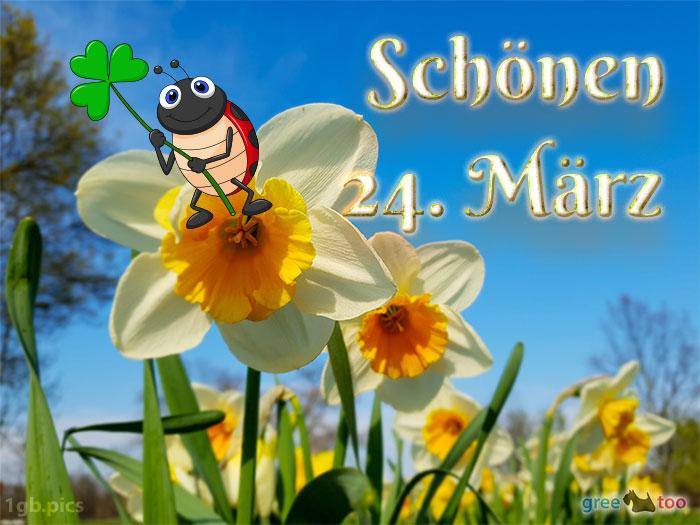 Schoenen 24 Maerz Bild - 1gb.pics