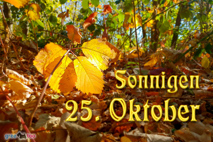 Sonnigen 25 Oktober Bild - 1gb.pics