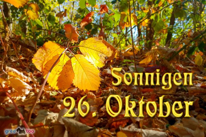 Sonnigen 26 Oktober Bild - 1gb.pics