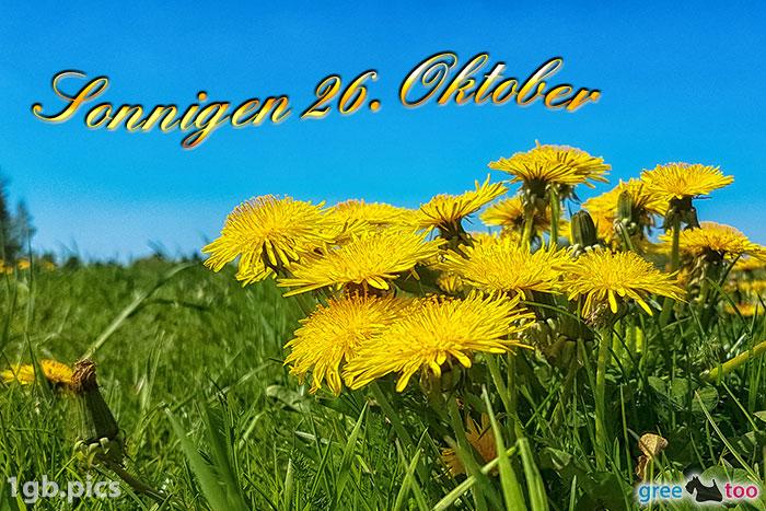 Loewenzahn Sonnigen 26 Oktober Bild - 1gb.pics