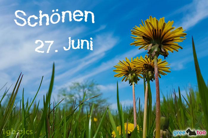 Loewenzahn Himmel Schoenen 27 Juni Bild - 1gb.pics