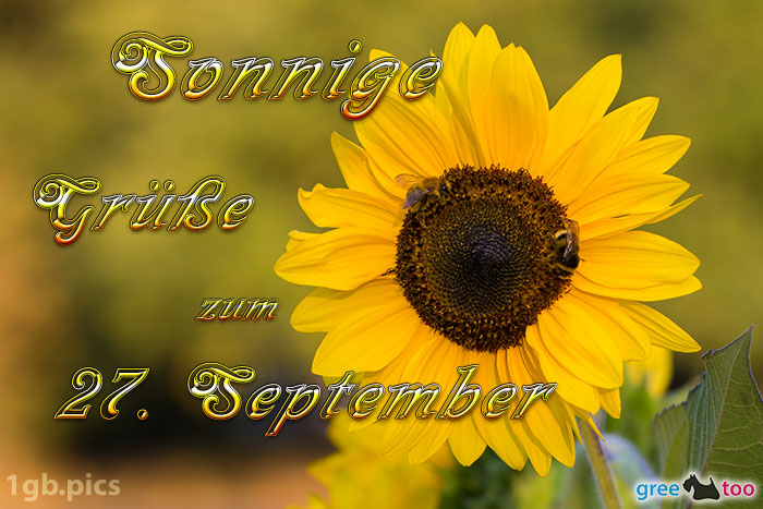 Sonnenblume Bienen Zum 27 September Bild - 1gb.pics