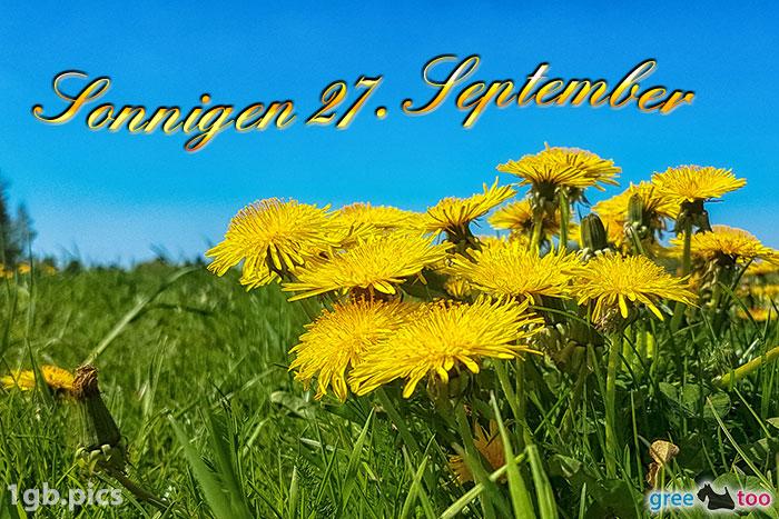 Loewenzahn Sonnigen 27 September Bild - 1gb.pics