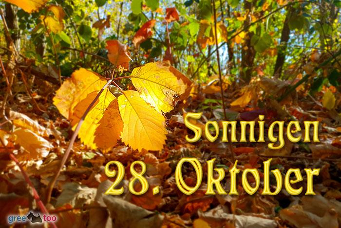 Sonnigen 28 Oktober Bild - 1gb.pics