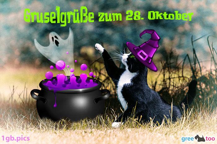 Katze Gruselgruesse Zum 28 Oktober Bild - 1gb.pics