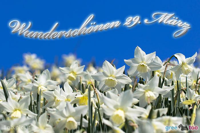 Wunderschoenen 29 Maerz Bild - 1gb.pics