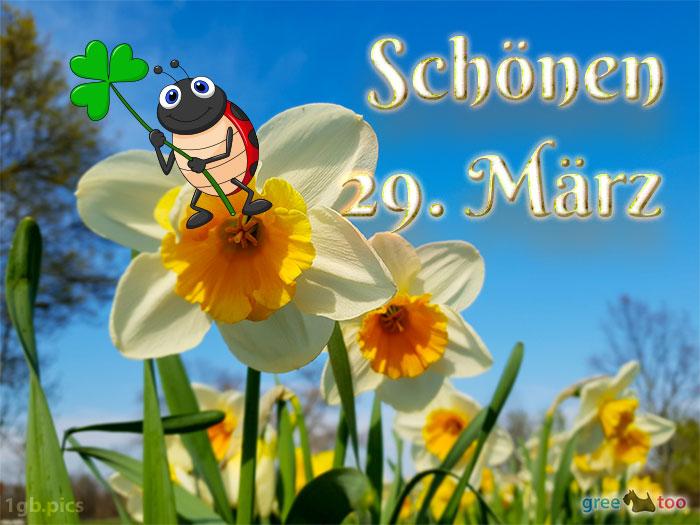 Schoenen 29 Maerz Bild - 1gb.pics